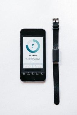 zenta-app-peq